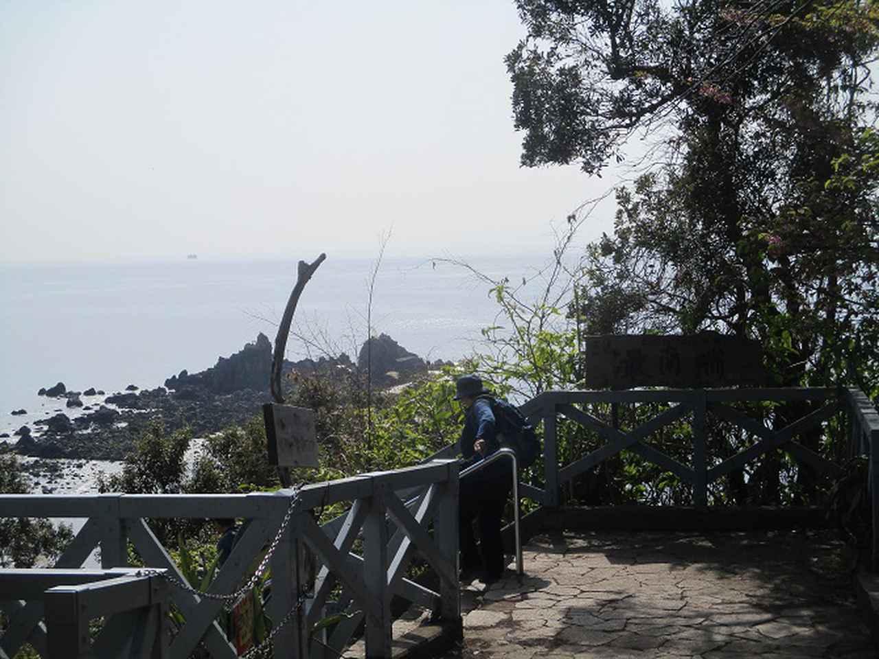 画像3: 岡田ガイドのハイキングコースで、 真鶴半島 へ行ってきました♪