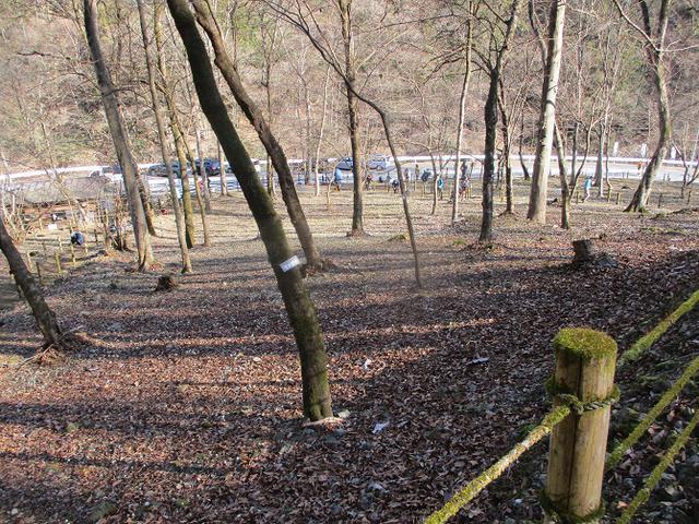 画像11: 来年春の企画素材を探して埼玉県小鹿野町の四阿屋山あたりを歩いてみました!