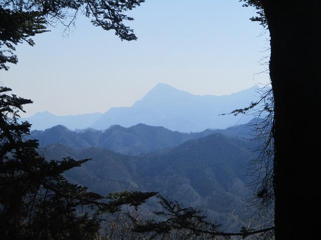 画像7: 来年春の企画素材を探して埼玉県小鹿野町の四阿屋山あたりを歩いてみました!