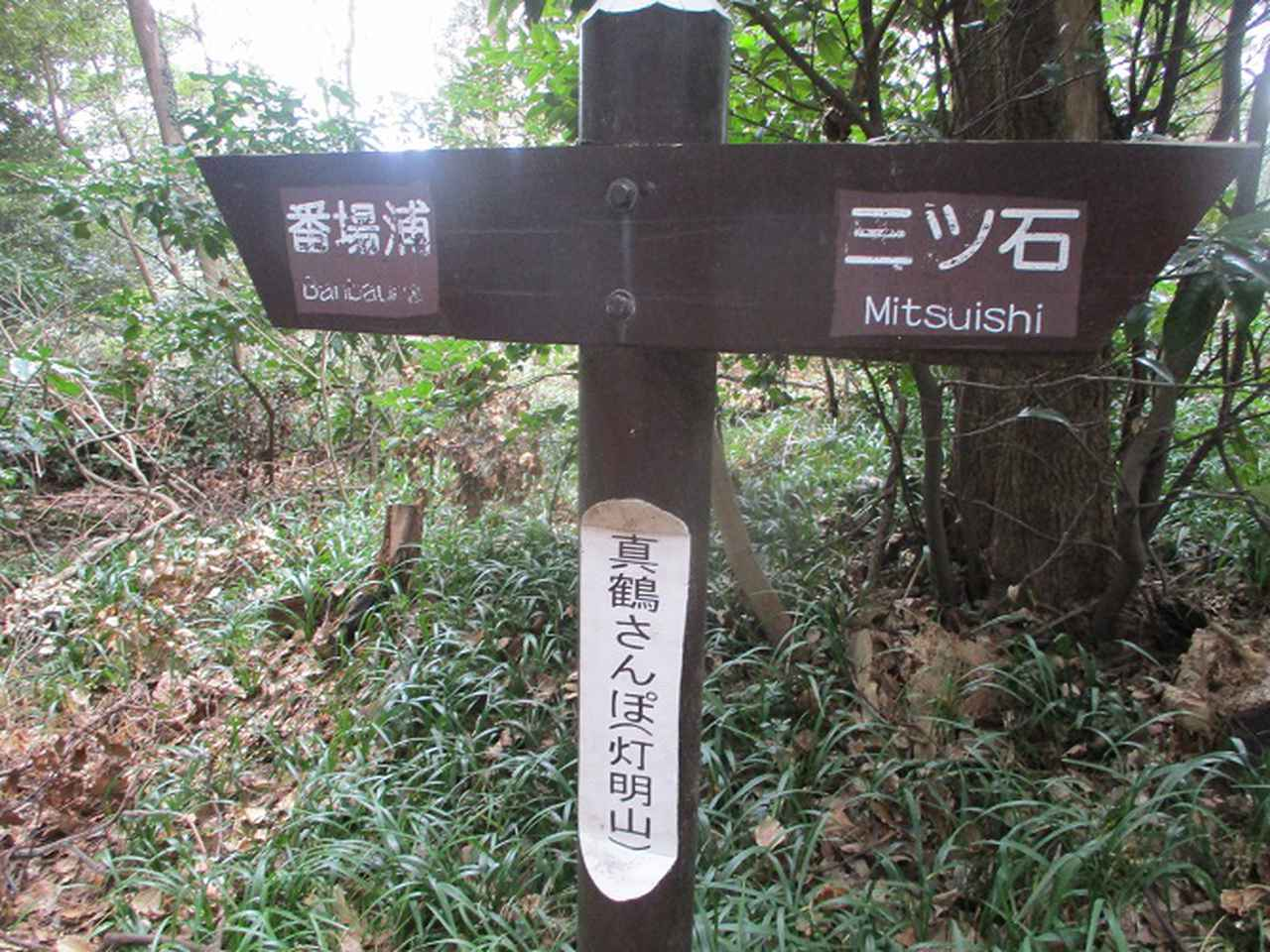 画像9: 岡田ガイドのハイキングコースで、 真鶴半島 へ行ってきました♪