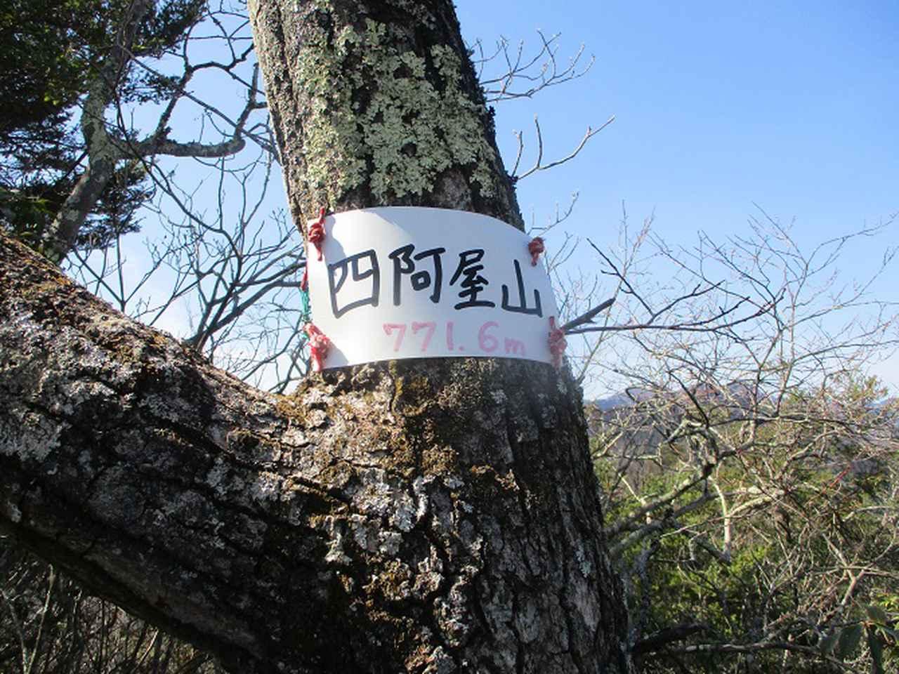 画像8: 来年春の企画素材を探して埼玉県小鹿野町の四阿屋山あたりを歩いてみました!