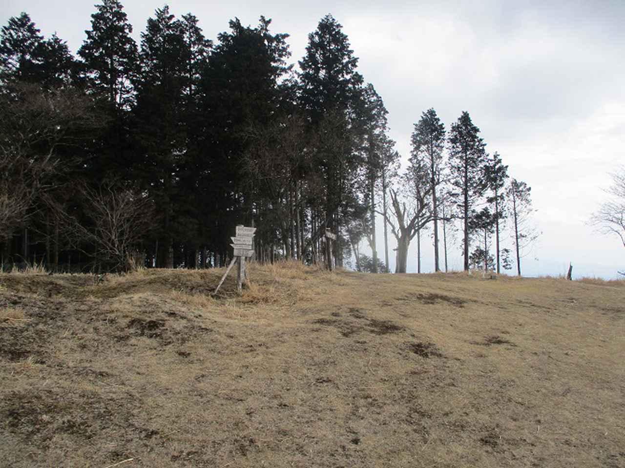 画像5: 3月の山旅会 高松山 の下見に行ってきました!