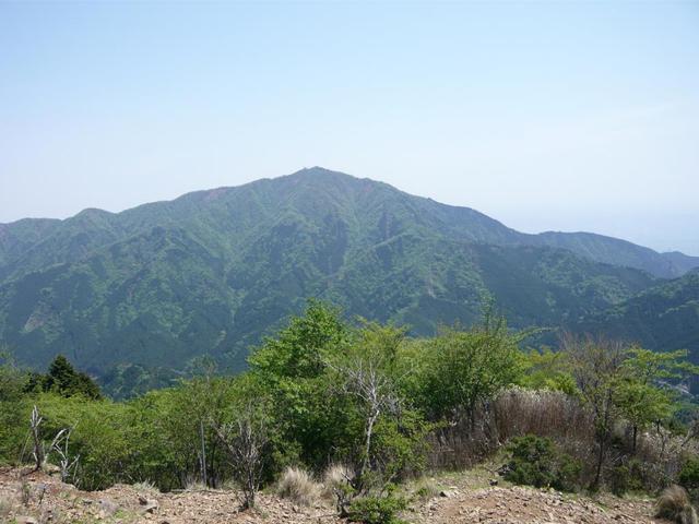 画像: 丹沢大山