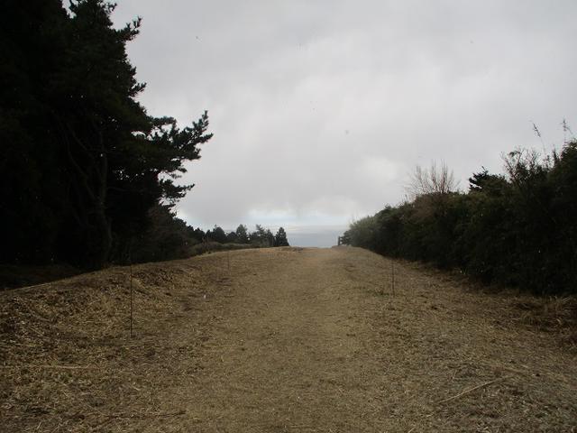 画像6: 3月の山旅会 岩戸山 の下見に行ってきました!