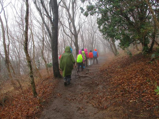 画像8: 3月2日に山旅会 幕山と南郷山 ツアーに行ってきました!