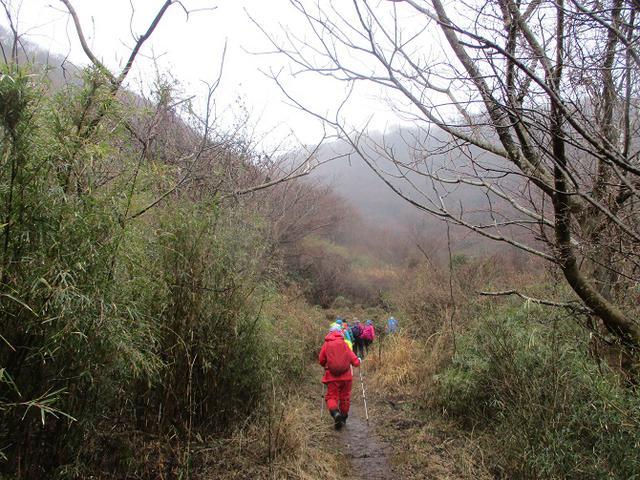 画像2: 3月2日に山旅会 幕山と南郷山 ツアーに行ってきました!