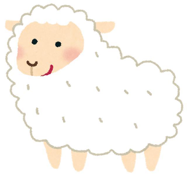 画像: 高級な羊毛です