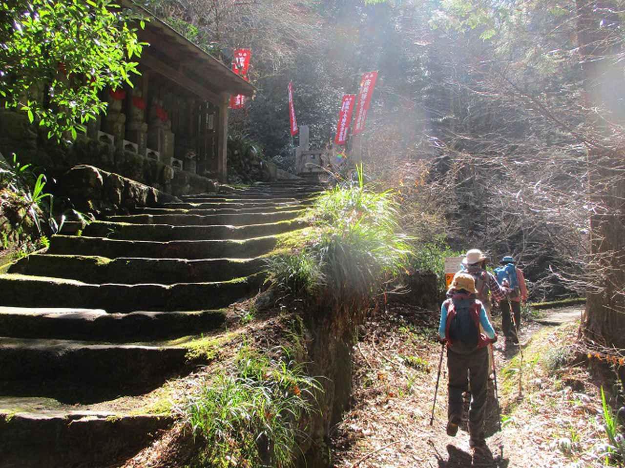 画像4: 3月3日に山旅会 堂上セツブンソウと破風山 のツアーに行ってきました!