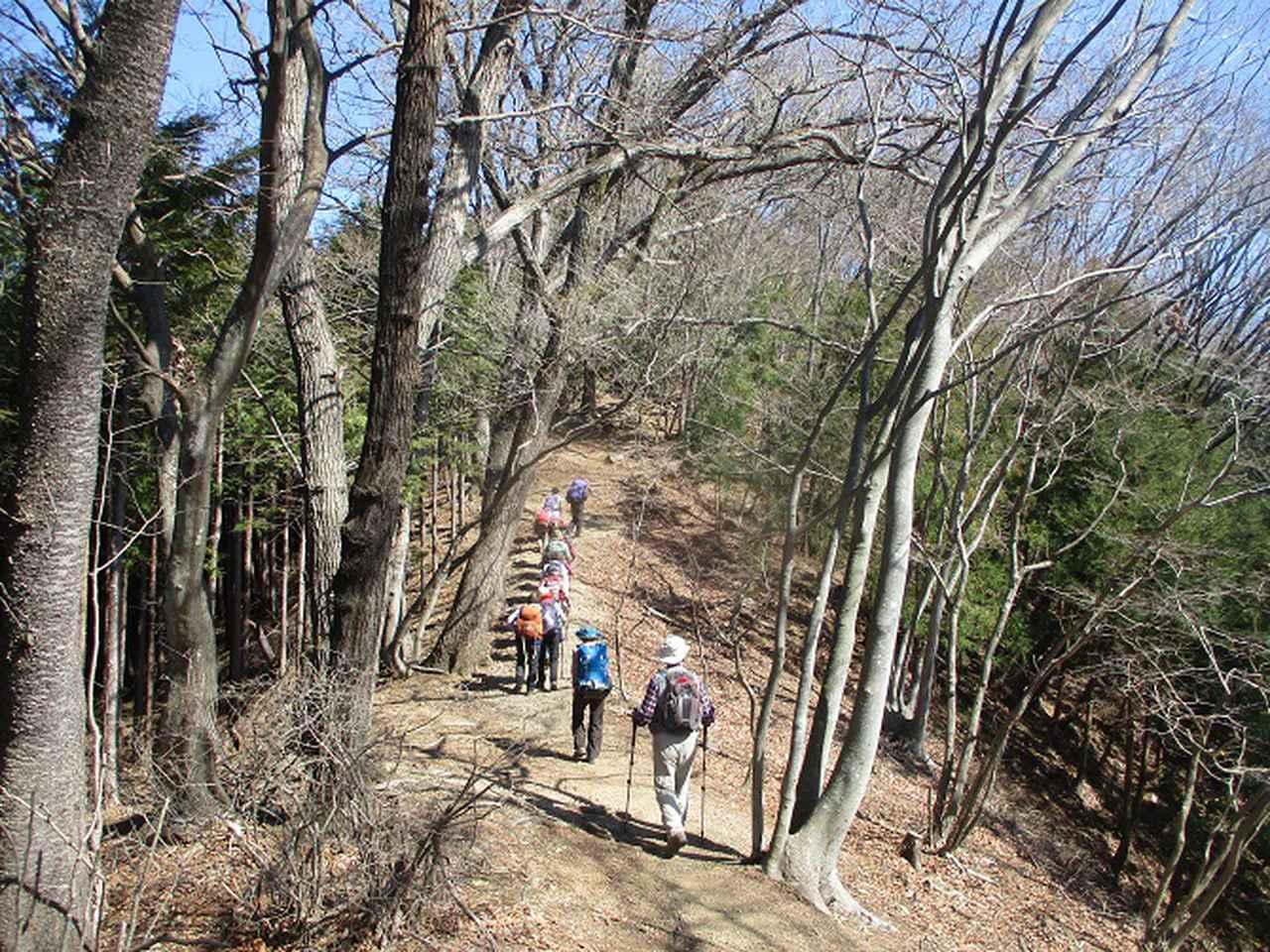 画像6: 3月3日に山旅会 堂上セツブンソウと破風山 のツアーに行ってきました!