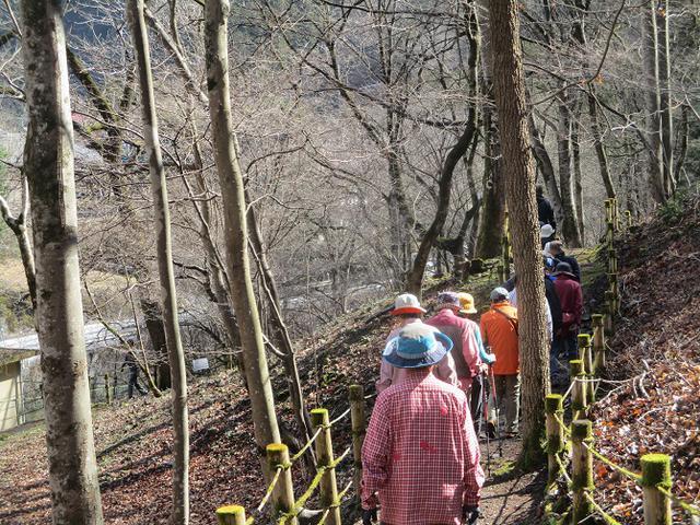 画像1: 3月3日に山旅会 堂上セツブンソウと破風山 のツアーに行ってきました!