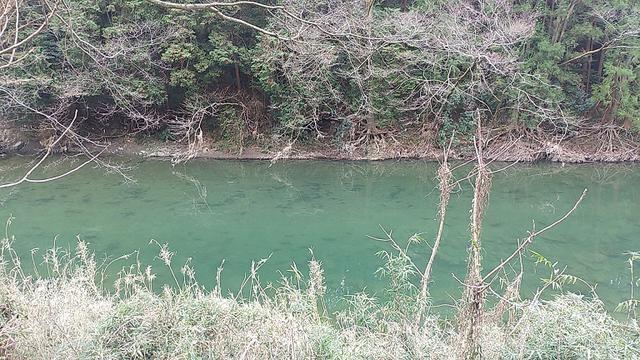 画像12: 3月の山旅会 仙元山から嵐山渓谷 ツアーの下見に行ってきました!