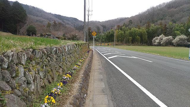 画像11: 3月の山旅会 仙元山から嵐山渓谷 ツアーの下見に行ってきました!
