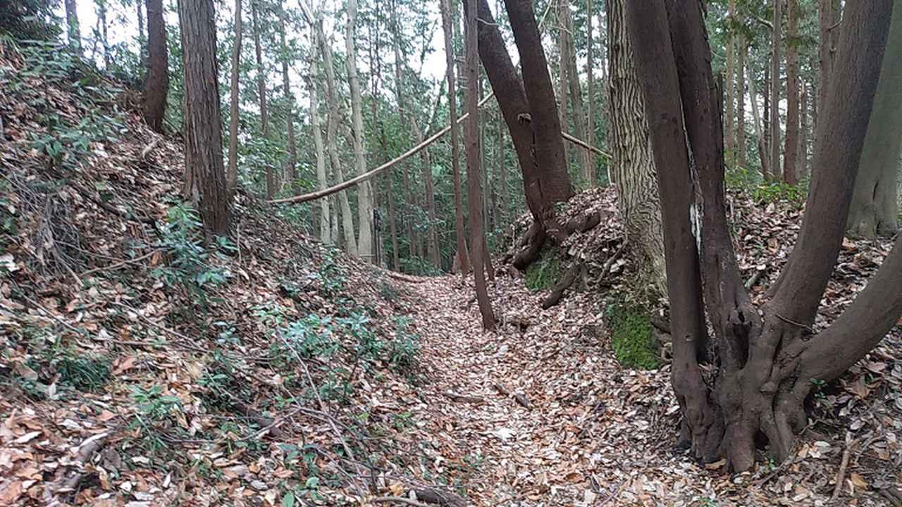 画像6: 3月の山旅会 仙元山から嵐山渓谷 ツアーの下見に行ってきました!