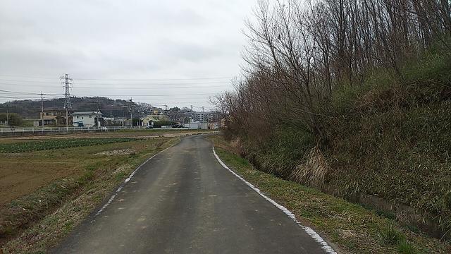 画像13: 3月の山旅会 仙元山から嵐山渓谷 ツアーの下見に行ってきました!