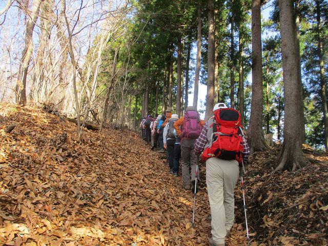 画像1: 3月9日に山旅会 高松山 ツアーに行ってきました!