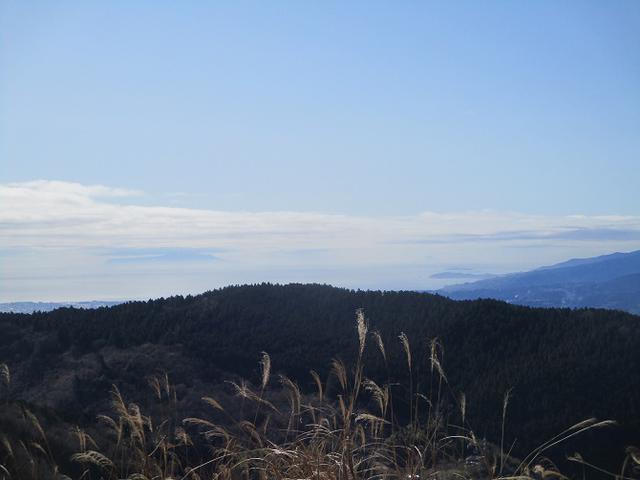 画像3: 3月9日に山旅会 高松山 ツアーに行ってきました!