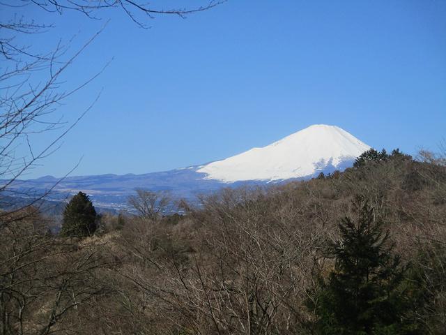 画像2: 3月9日に山旅会 高松山 ツアーに行ってきました!