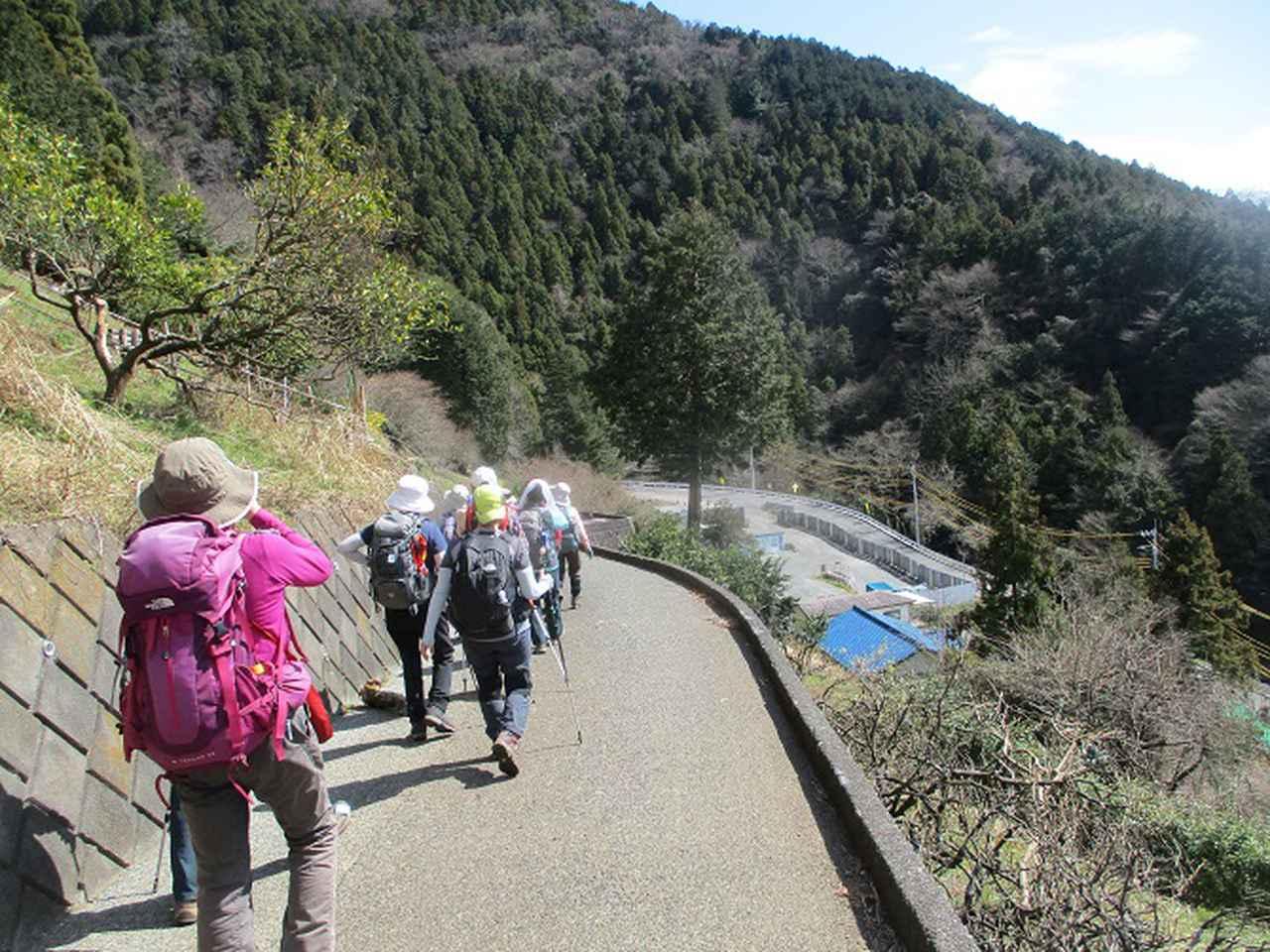 画像10: 3月9日に山旅会 高松山 ツアーに行ってきました!