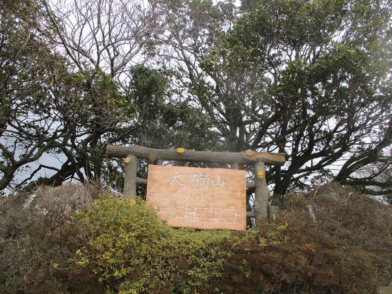 画像4: 3月7日に山旅会 大楠山から衣笠城跡 ツアーに行ってきました!