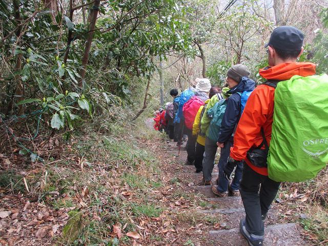 画像5: 3月7日に山旅会 大楠山から衣笠城跡 ツアーに行ってきました!