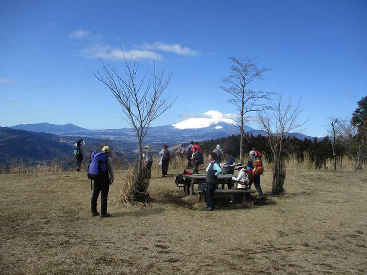 画像7: 3月9日に山旅会 高松山 ツアーに行ってきました!