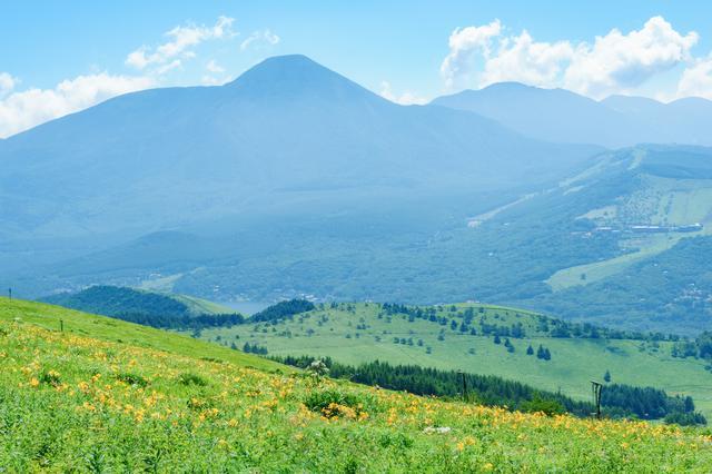 画像: 霧ヶ峰から見る北八ヶ岳にある蓼科山
