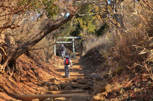 画像: 登山道の様子