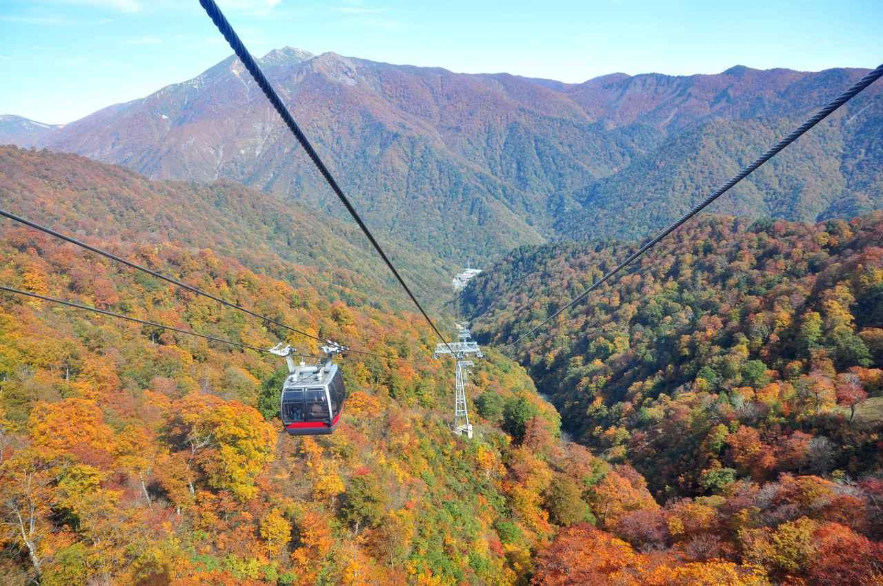 画像: 秋の紅葉とロープウェイ