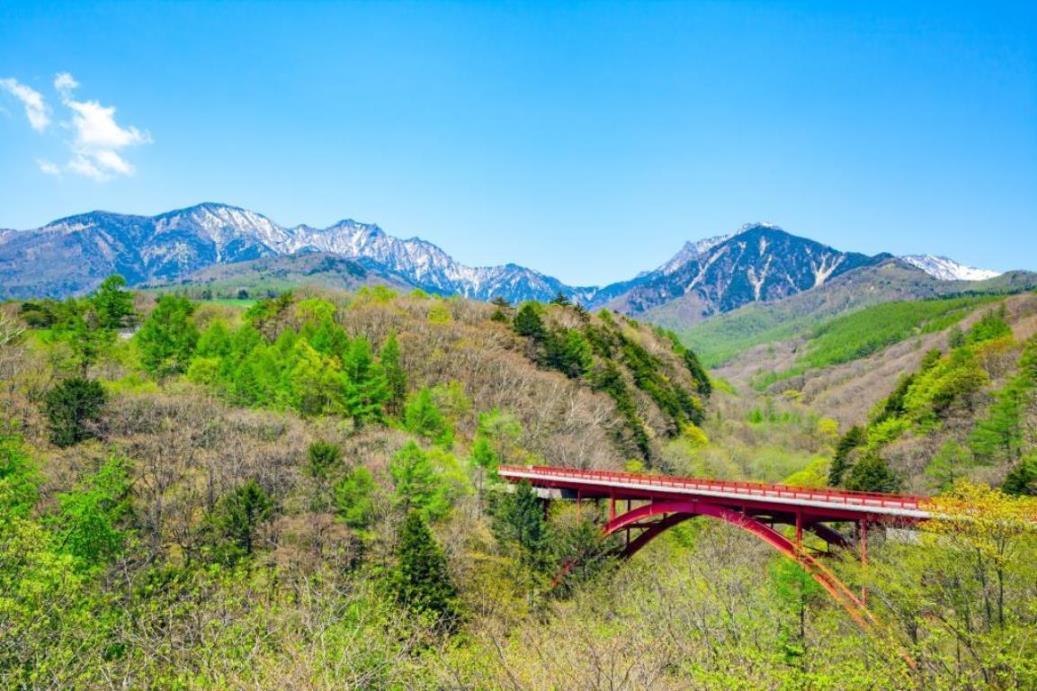 画像: 春の八ヶ岳山麓ハイキング|クラブツーリズム