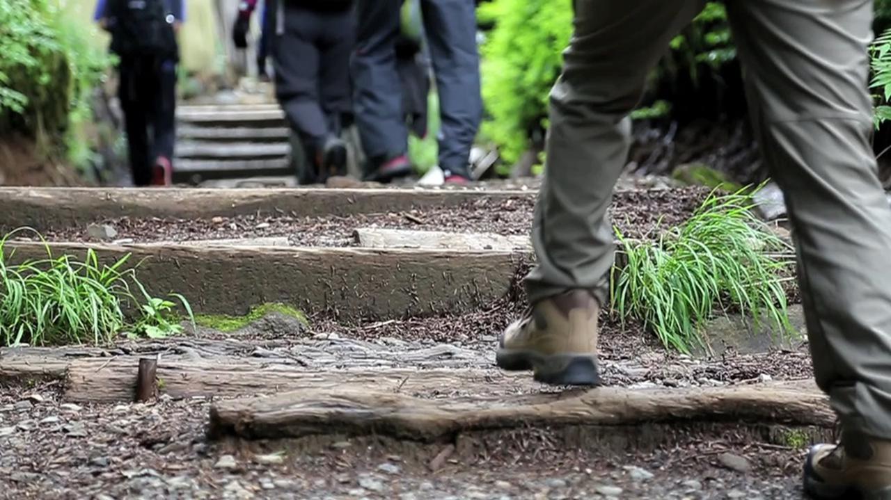 画像: 初めの一歩を踏み出そう!