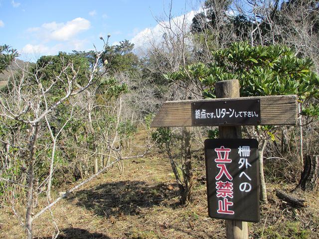 画像13: 3月5日から山旅会 「田原アルプスと神石山」 ツアーに行ってきました!