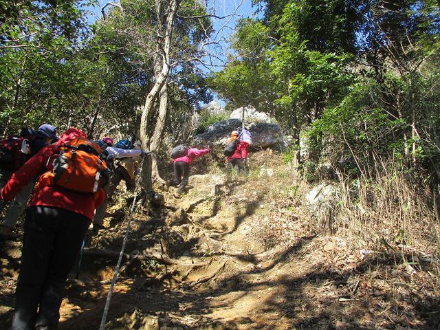 画像5: 3月5日から山旅会 「田原アルプスと神石山」 ツアーに行ってきました!