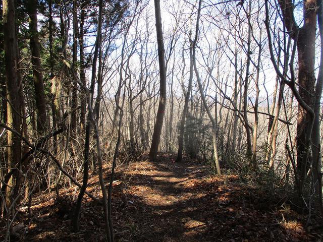 画像11: 3月の山旅会 「陣見山」 ツアーの下見のご報告です!