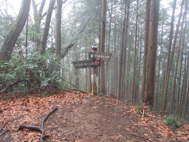 画像9: 4月の山旅会現地集合コース 天狗岩から要害山 の下見に行ってきました!