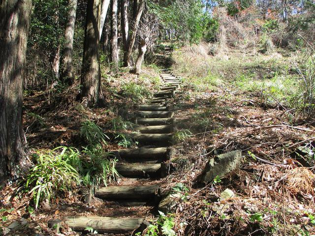 画像6: 3月の山旅会 「陣見山」 ツアーの下見のご報告です!