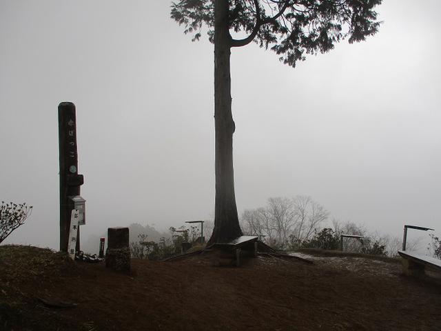 画像6: 4月の山旅会現地集合コース 天狗岩から要害山 の下見に行ってきました!