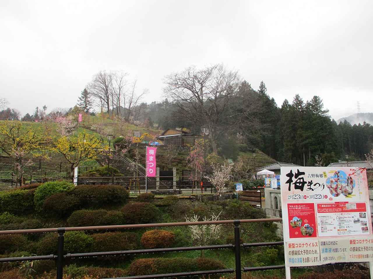 画像12: 4月の山旅会現地集合コース 天狗岩から要害山 の下見に行ってきました!