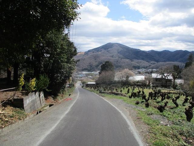 画像14: 3月の山旅会 「陣見山」 ツアーの下見のご報告です!