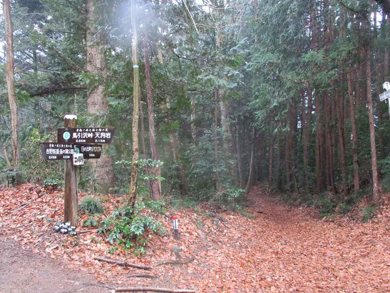 画像4: 4月の山旅会現地集合コース 天狗岩から要害山 の下見に行ってきました!