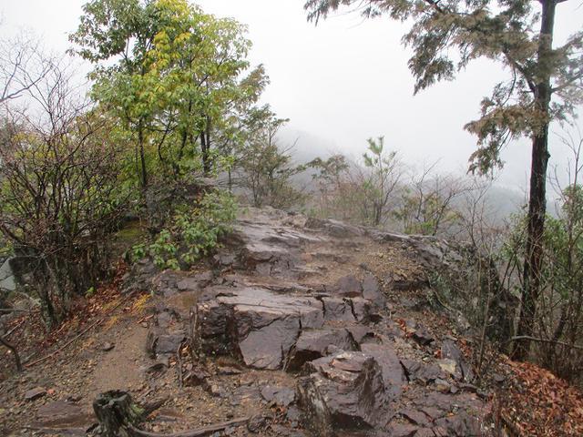 画像8: 4月の山旅会現地集合コース 天狗岩から要害山 の下見に行ってきました!