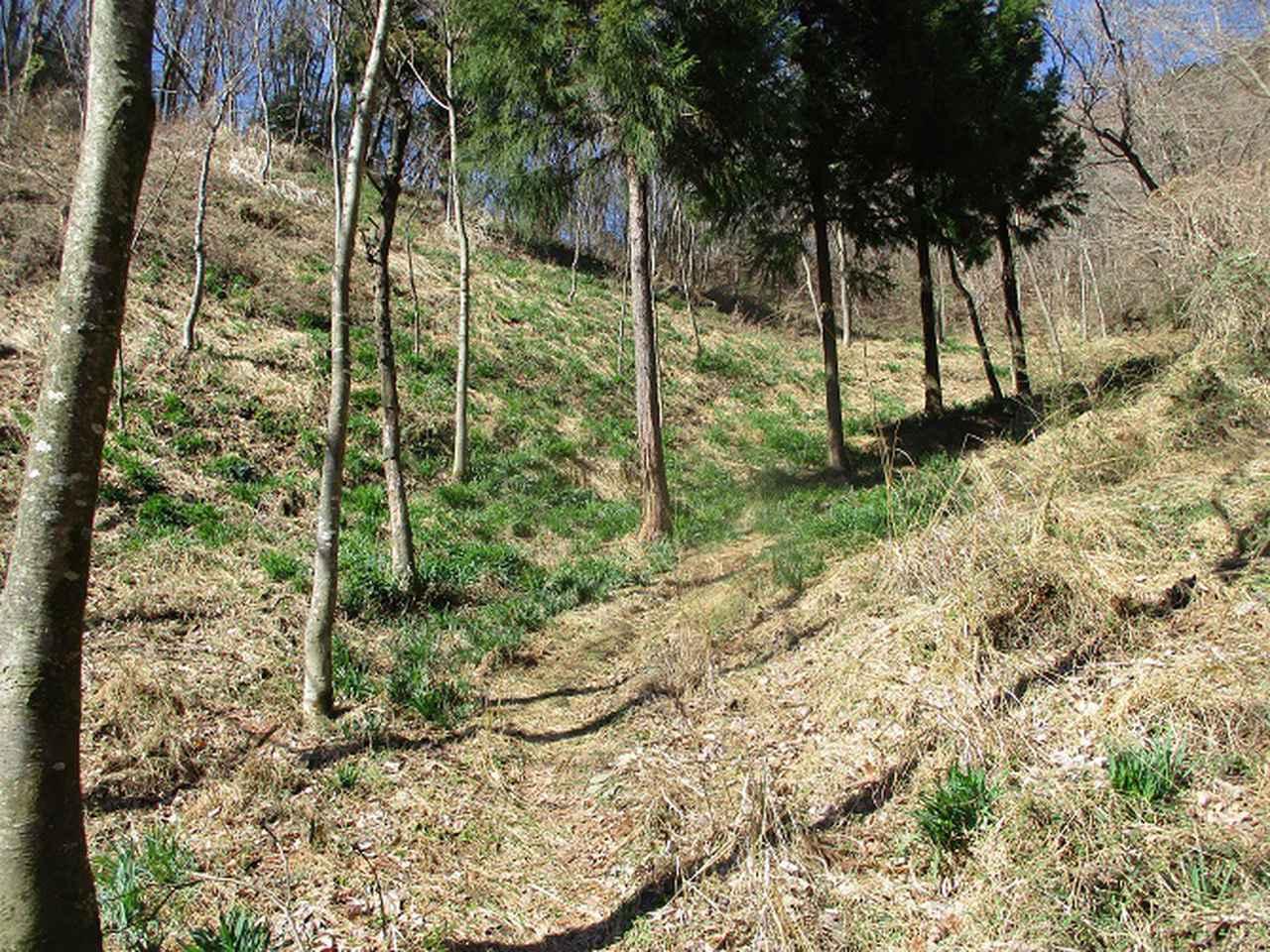 画像2: 3月の山旅会 「陣見山」 ツアーの下見のご報告です!
