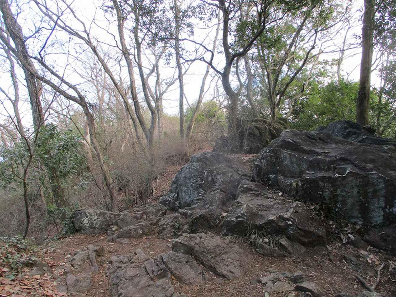 画像6: 3月の山旅会 三毳(みかも)山ツアー の下見に行ってきました!