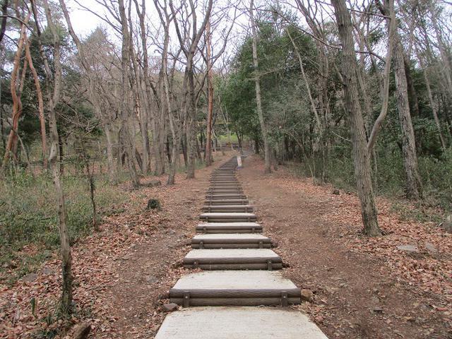 画像2: 3月の山旅会 三毳(みかも)山ツアー の下見に行ってきました!