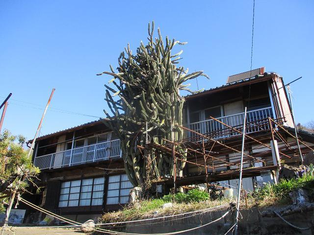 画像1: 4月の山旅会 神成山 の下見に行ってきました!