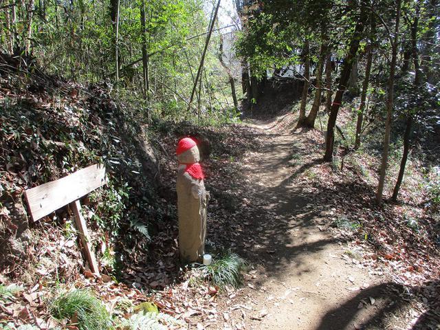 画像10: 4月の山旅会 神成山 の下見に行ってきました!