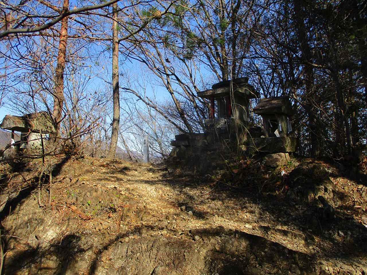 画像3: 4月の山旅会 神成山 の下見に行ってきました!