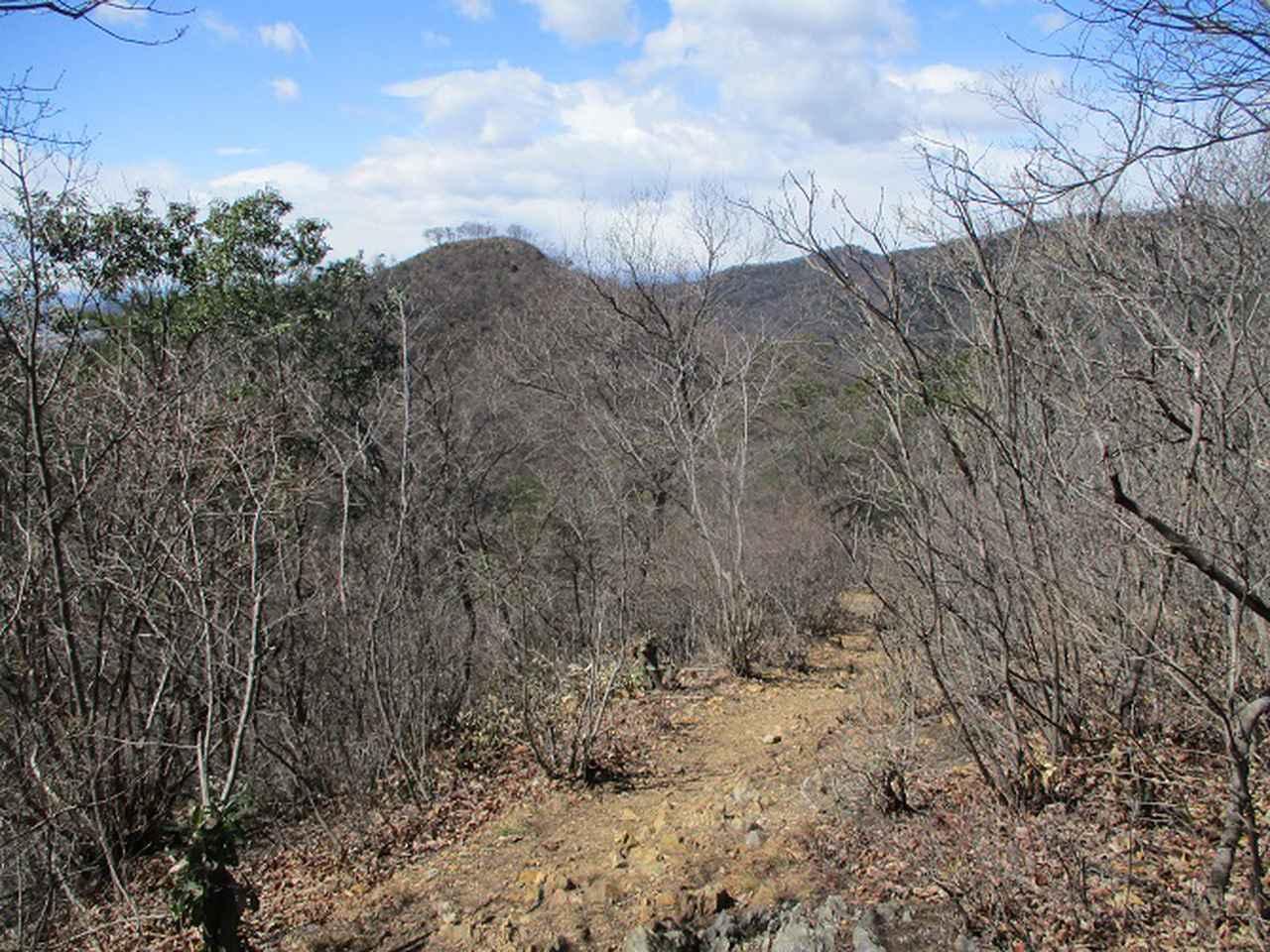 画像6: 4月の山旅会 両崖山から天狗山 ツアーの下見に行ってきました!