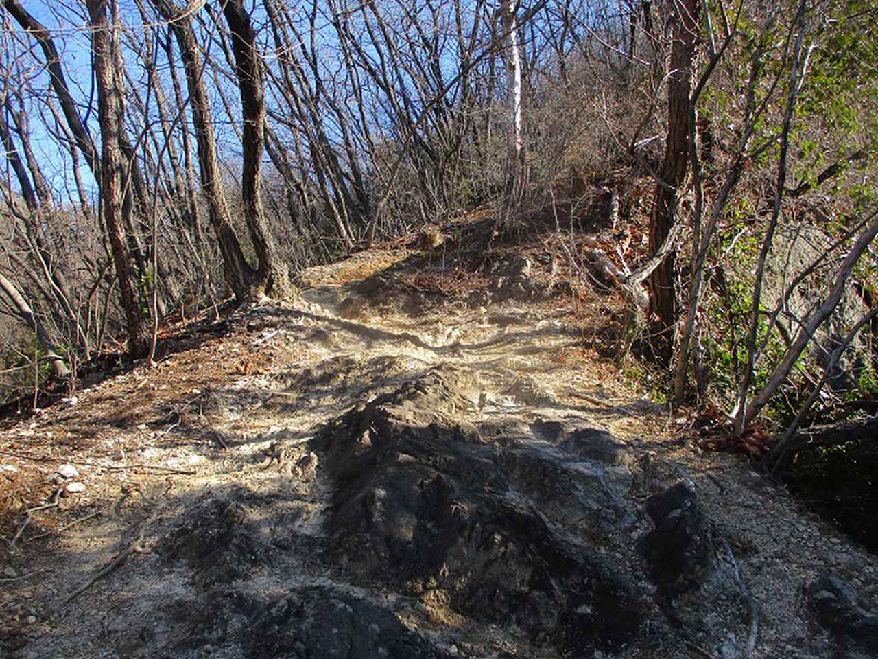 画像2: 4月の山旅会 神成山 の下見に行ってきました!
