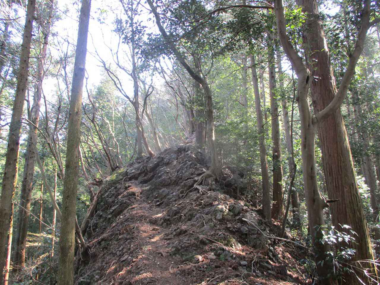 画像4: 企画素材を探して西武線沿線の 大高山から天覚山 を歩いてみました!