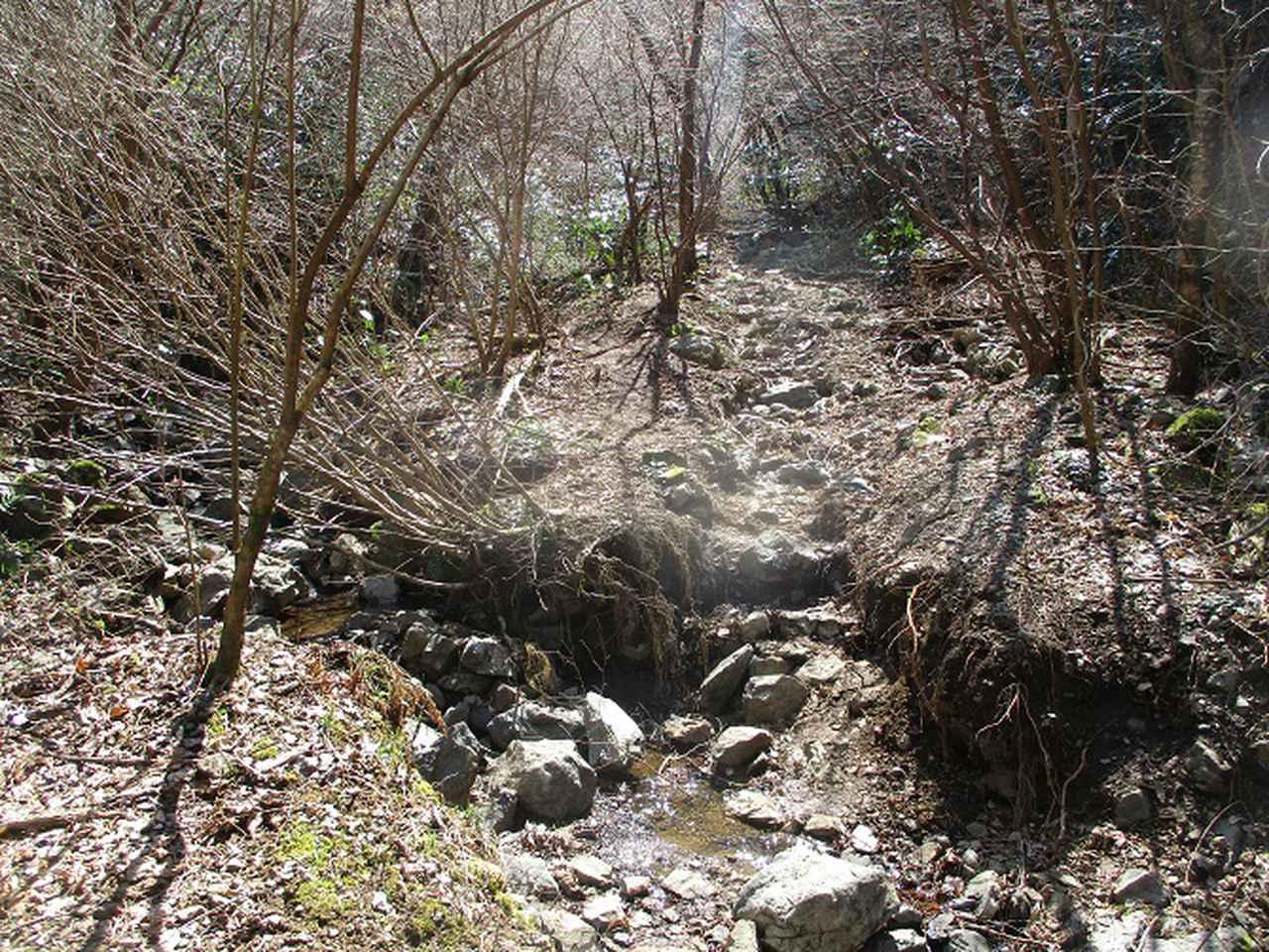 画像9: 4月の山旅会・現地集合ツアー西山峠から草戸山ツアーの下見に行ってきました!